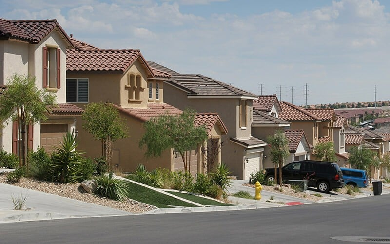 Las Vegas Neighborhood Pest Control