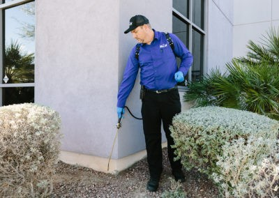 Pest-Proofing Your House
