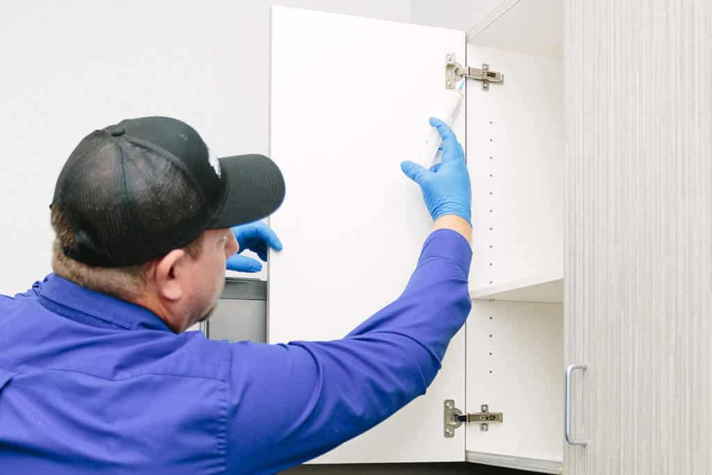 kitchen cabinet pest management treatment