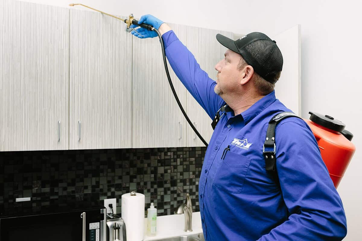 Pest Control Kitchen Cabinet Treatment
