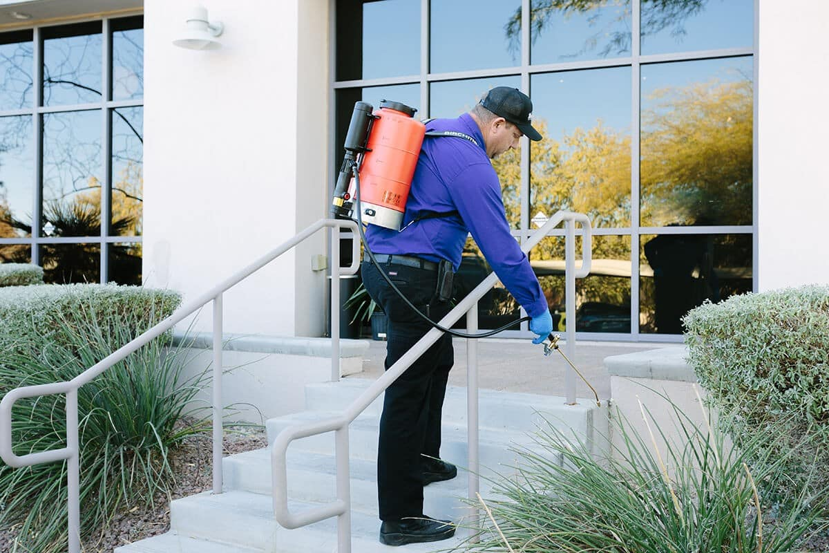 Outdoor commercial building pest control