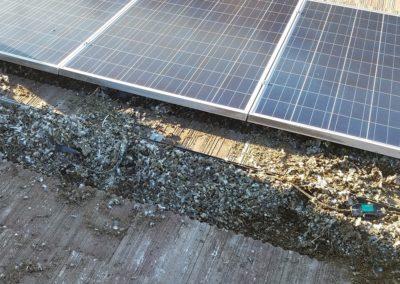 Solar Panel Pigeon Poop Before