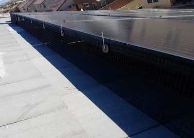 Solar Panel Pigeon Protection After