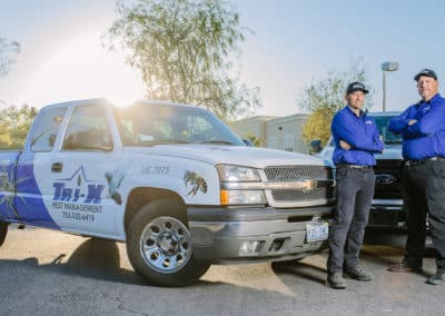 When to Call in the Professionals for Pest Control